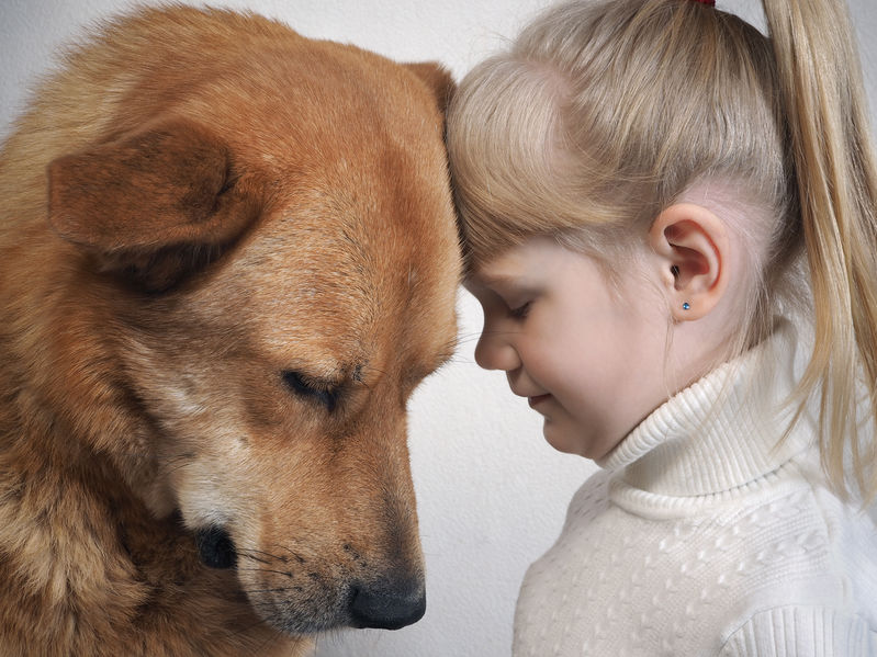 Empathie et bienveillance. La vente Dauphin met l'humain au centre.