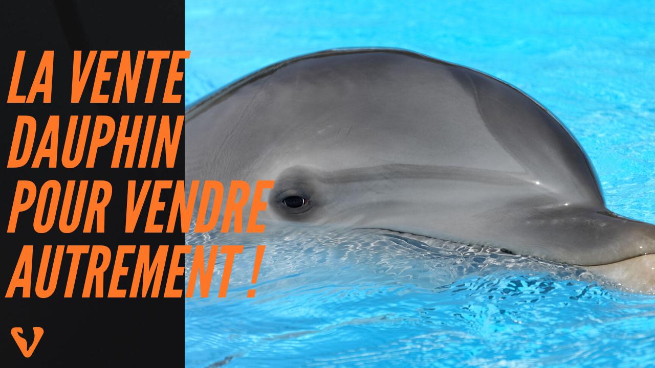 la vente dauphin : la solution pour vendre autrement